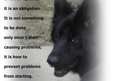 Gallery_Dog_Quote